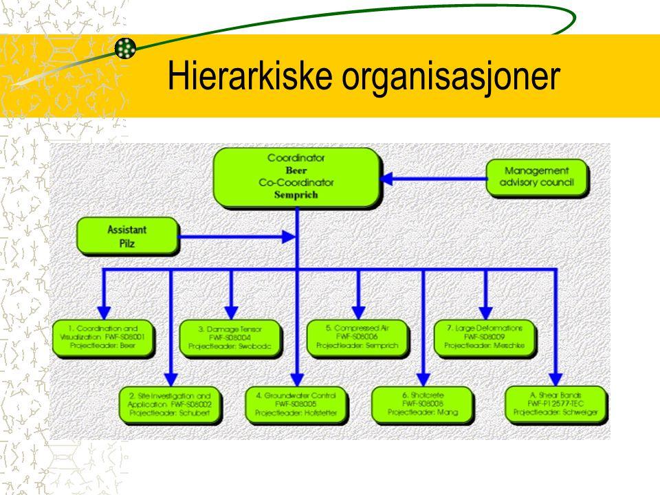 Hierarkiske organisasjoner