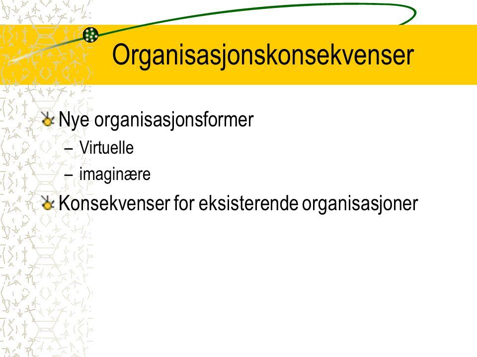 Organisasjonskonsekvenser