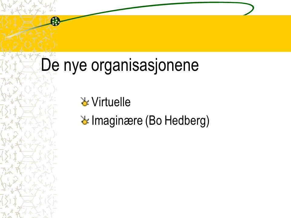 De nye organisasjonene
