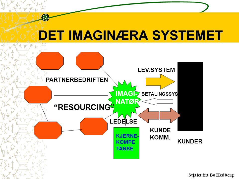 DET IMAGINÆRA SYSTEMET