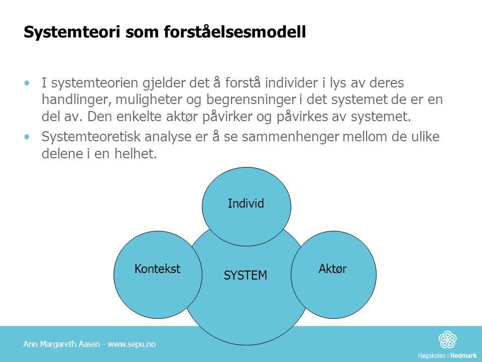 Systemteori som forståelsesmodell