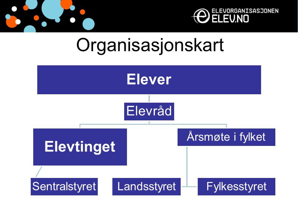 Organisasjonskart Elevtinget Elever Elevråd Årsmøte i fylket