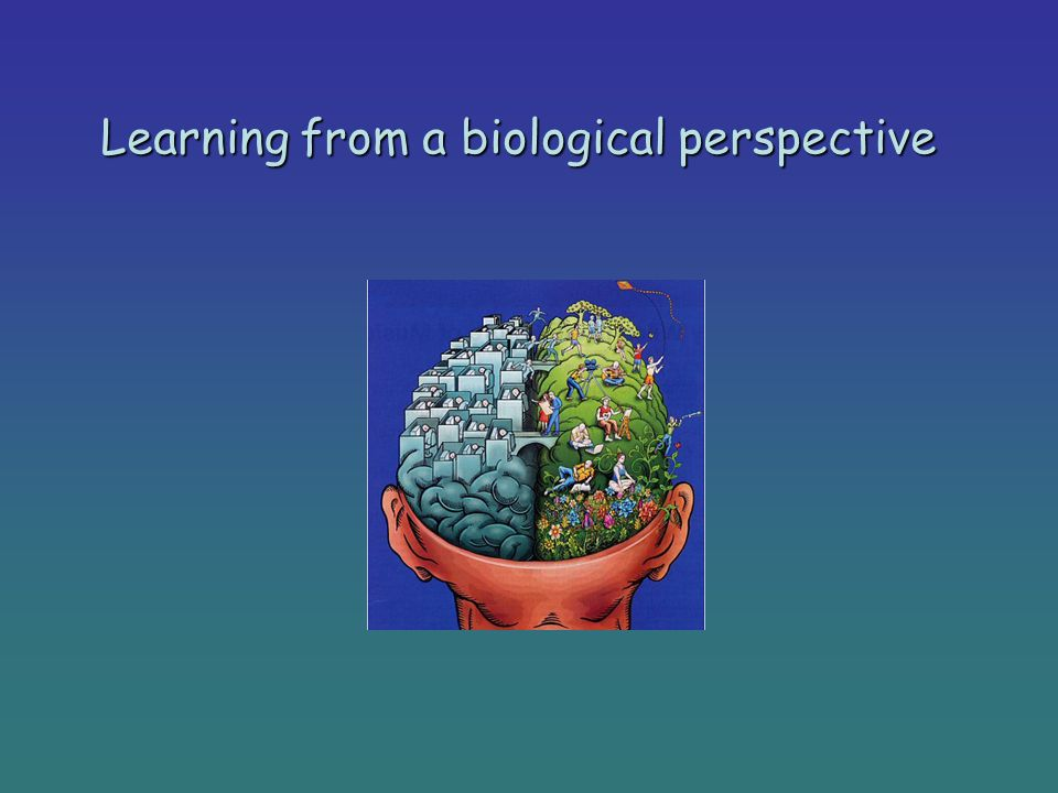 Learning from a biological perspective