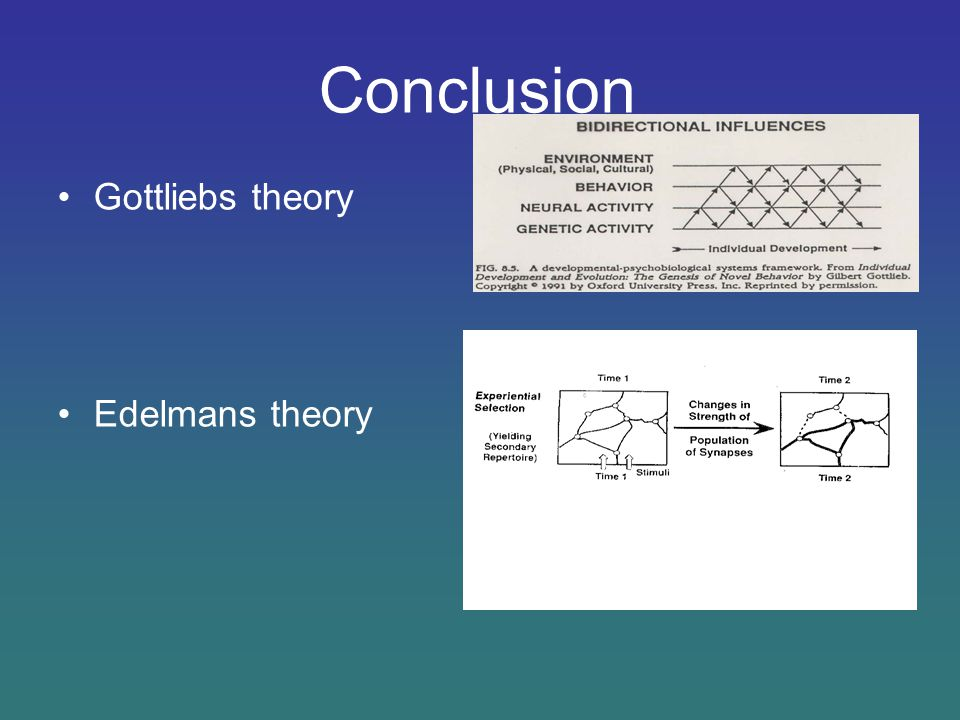 Conclusion Gottliebs theory Edelmans theory