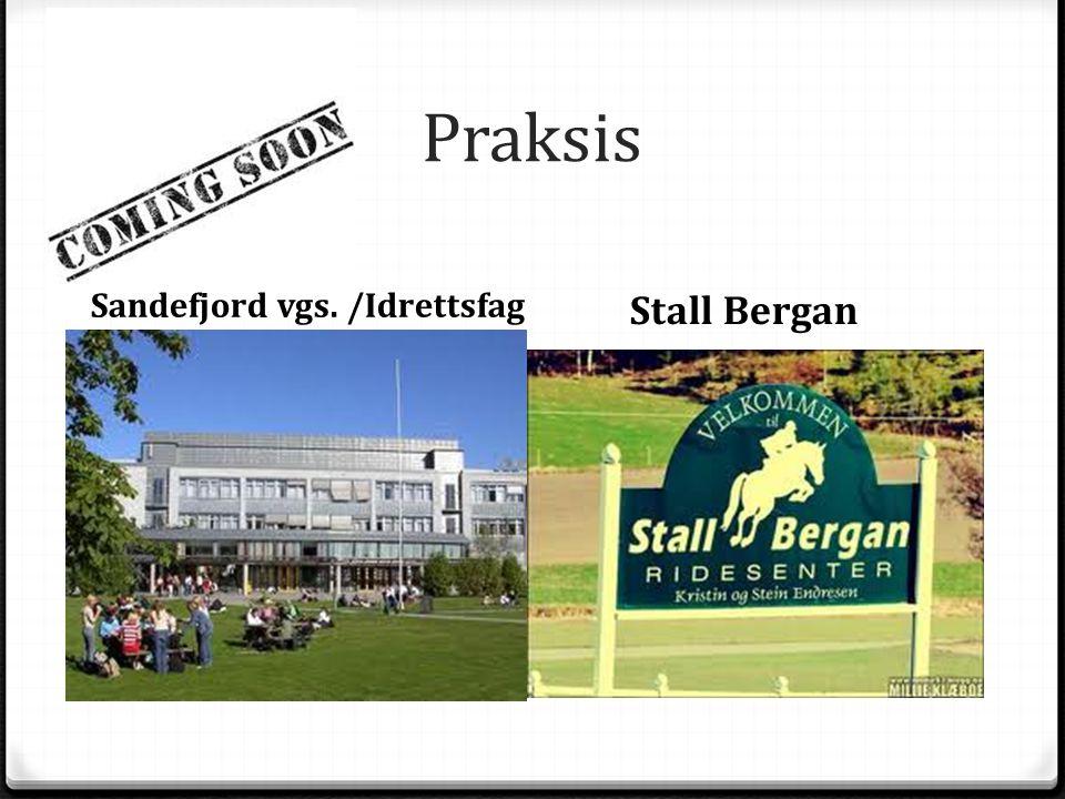 Praksis Sandefjord vgs. /Idrettsfag Stall Bergan