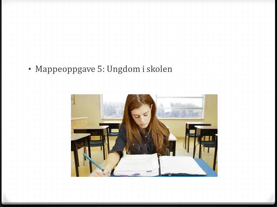 Mappeoppgave 5: Ungdom i skolen