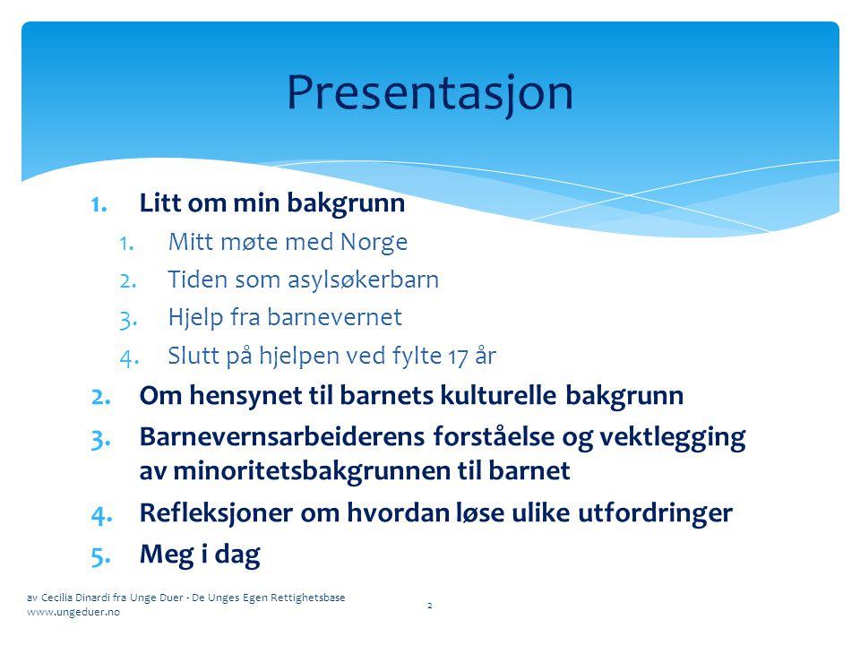 Presentasjon Litt om min bakgrunn