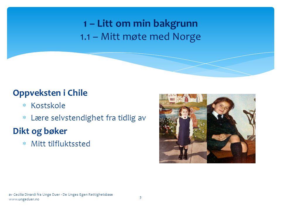 1 – Litt om min bakgrunn 1.1 – Mitt møte med Norge