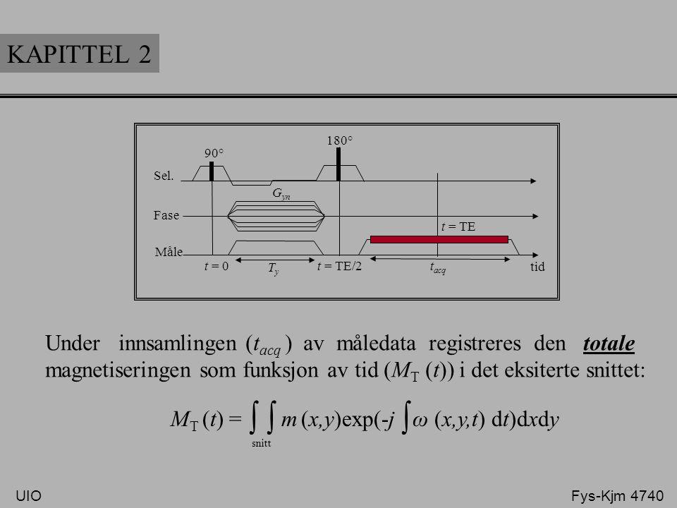 KAPITTEL 2 Sel. Fase. Måle. 90° 180° t = TE. t = TE/2. t = 0. Ty. tacq. Gyn.