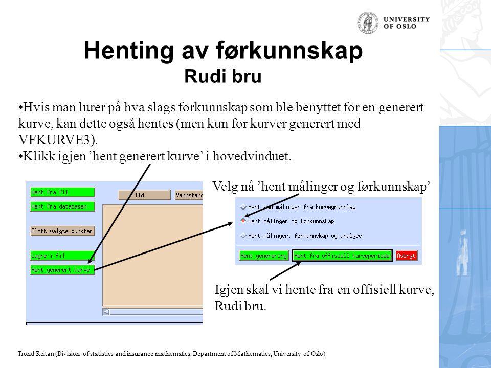 Henting av førkunnskap Rudi bru