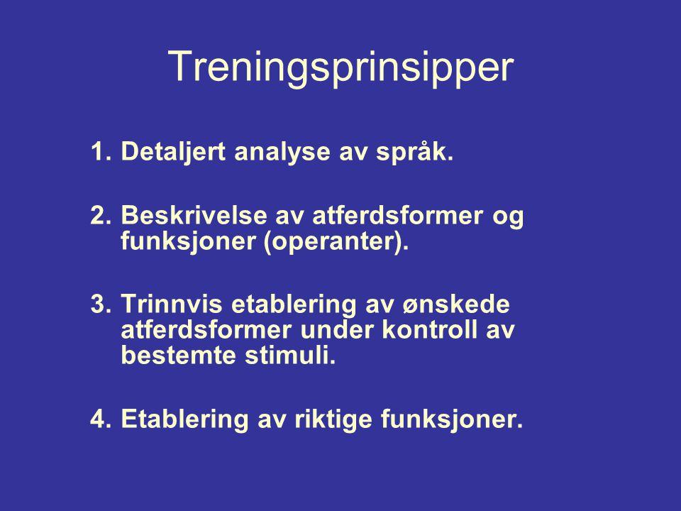 Treningsprinsipper Detaljert analyse av språk.