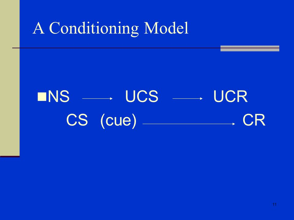 A Conditioning Model NS UCS UCR CS (cue) CR
