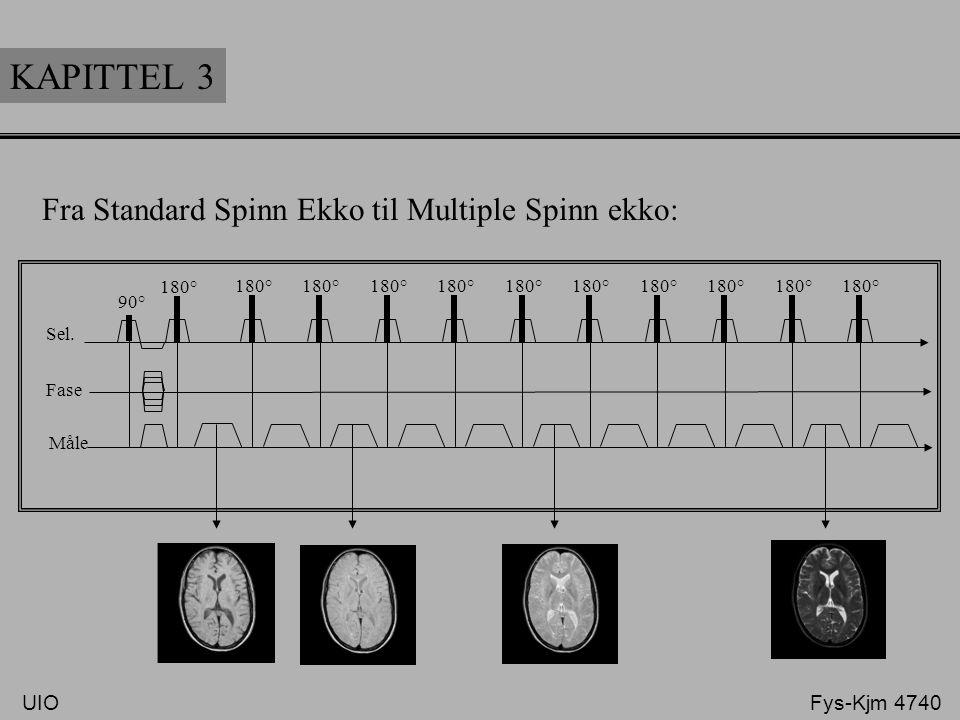 KAPITTEL 3 Fra Standard Spinn Ekko til Multiple Spinn ekko: