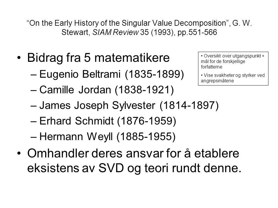 Bidrag fra 5 matematikere