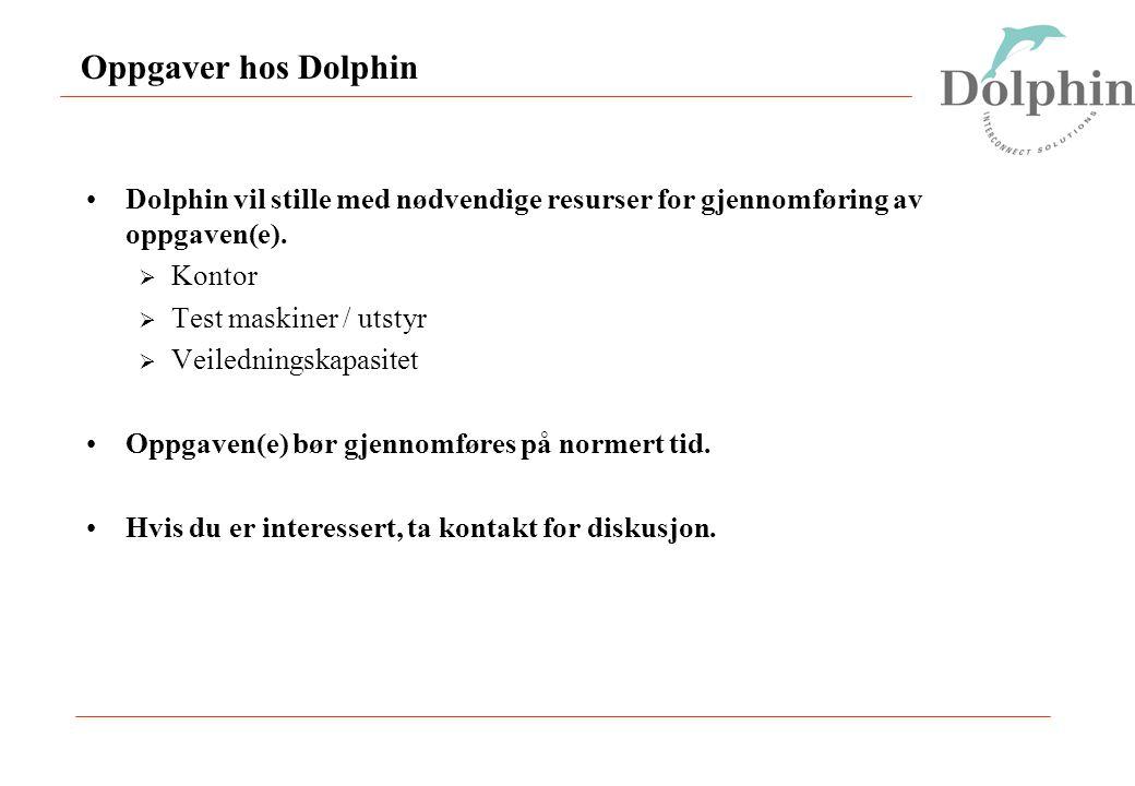 Oppgaver hos Dolphin Dolphin vil stille med nødvendige resurser for gjennomføring av oppgaven(e). Kontor.
