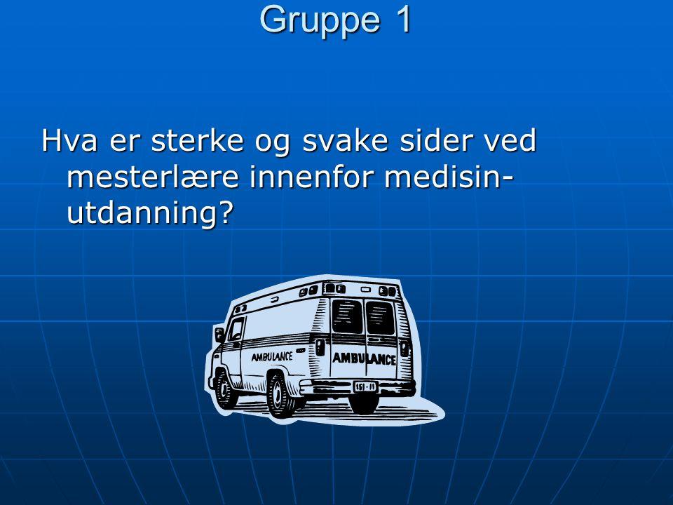 Gruppe 1 Hva er sterke og svake sider ved mesterlære innenfor medisin-utdanning