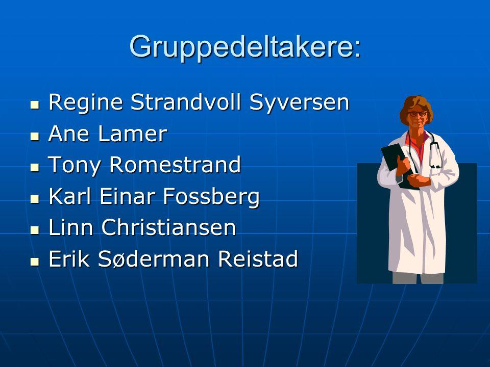 Gruppedeltakere: Regine Strandvoll Syversen Ane Lamer Tony Romestrand