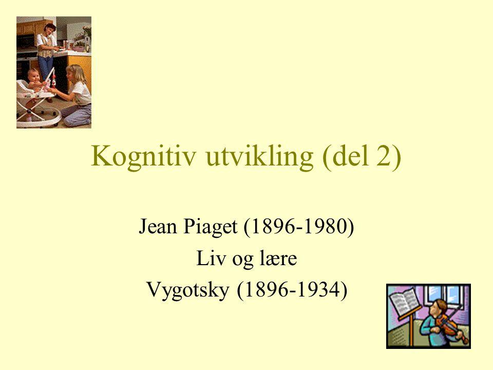 Kognitiv utvikling (del 2)