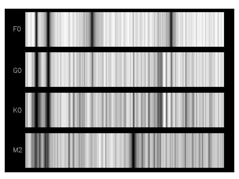 På de korteste bølgelengdene (til venstre) ser vi at den så kalte H linjen fra ionisert kalsium kommer opp alt ved klassen F0, ved T=7,200 K, når sin maksimale styrke ved K0, med T=4,200 K, og avtar så i styrke mot lavere temperaturer.