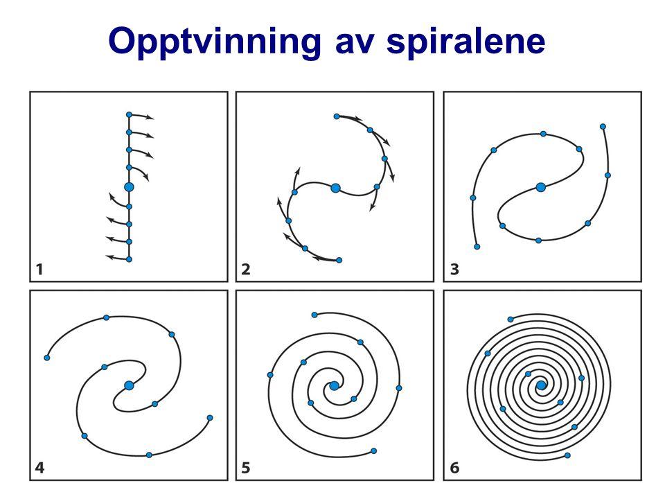 Opptvinning av spiralene