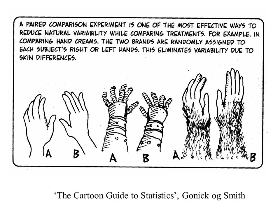 'The Cartoon Guide to Statistics', Gonick og Smith