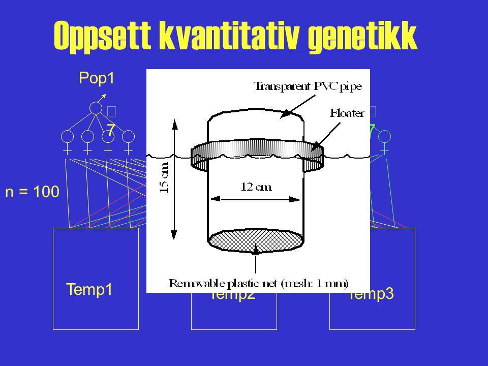 Oppsett kvantitativ genetikk