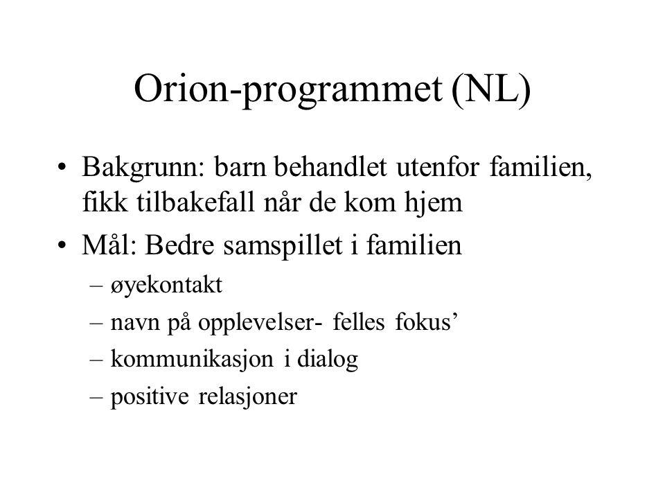 Orion-programmet (NL)