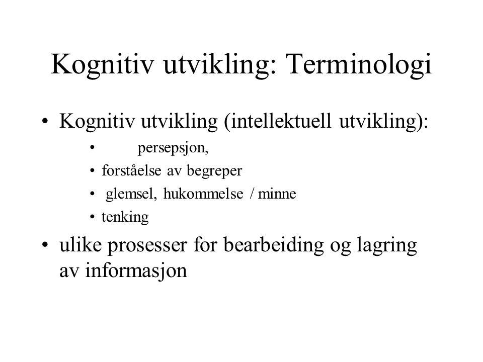Kognitiv utvikling: Terminologi