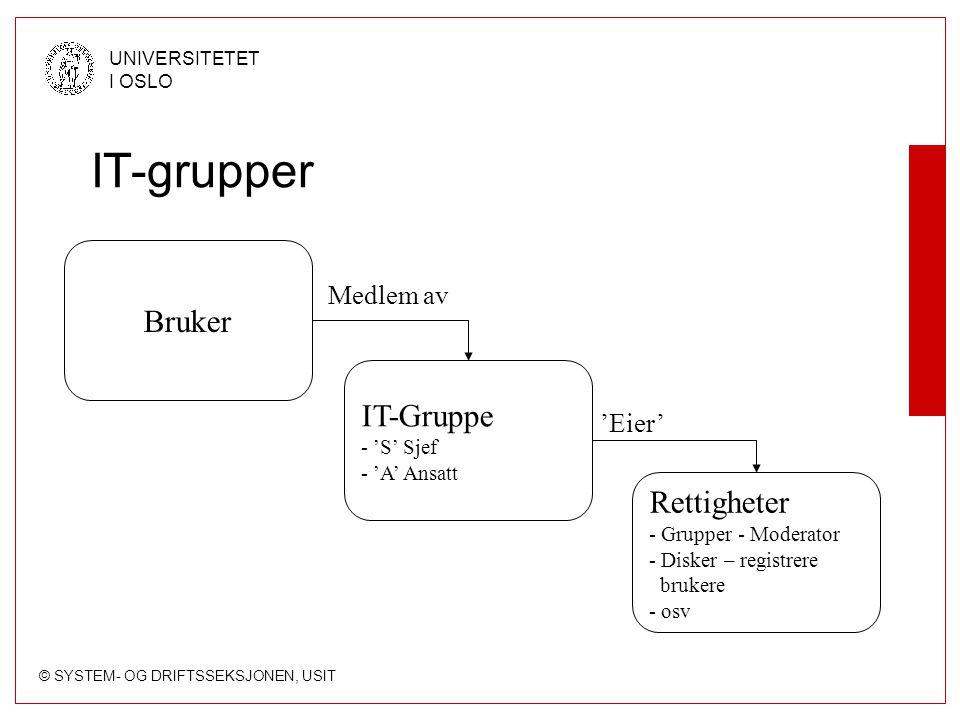 IT-grupper Bruker IT-Gruppe Rettigheter Medlem av 'Eier' 'S' Sjef