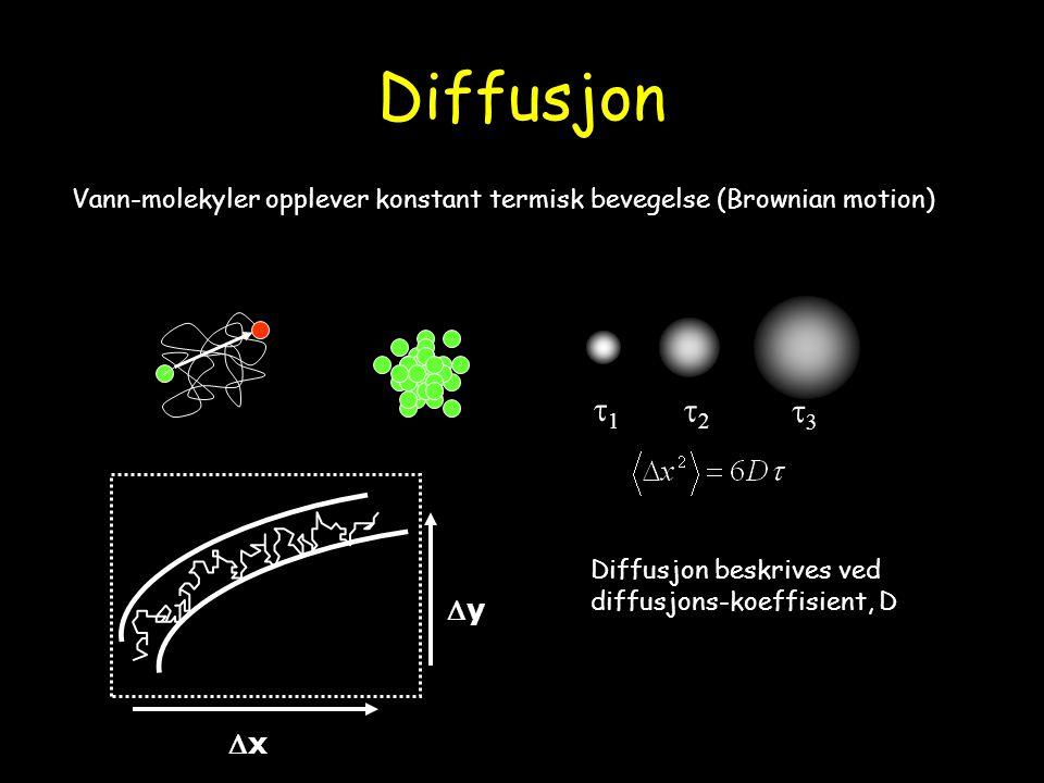 Diffusjon Vann-molekyler opplever konstant termisk bevegelse (Brownian motion) t1. t2. t3. Diffusjon beskrives ved.