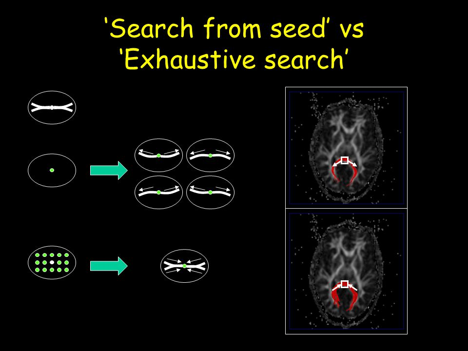 'Search from seed' vs 'Exhaustive search'