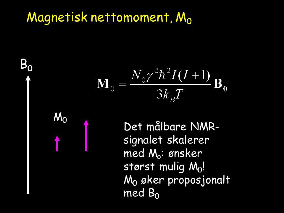 Magnetisk nettomoment, M0