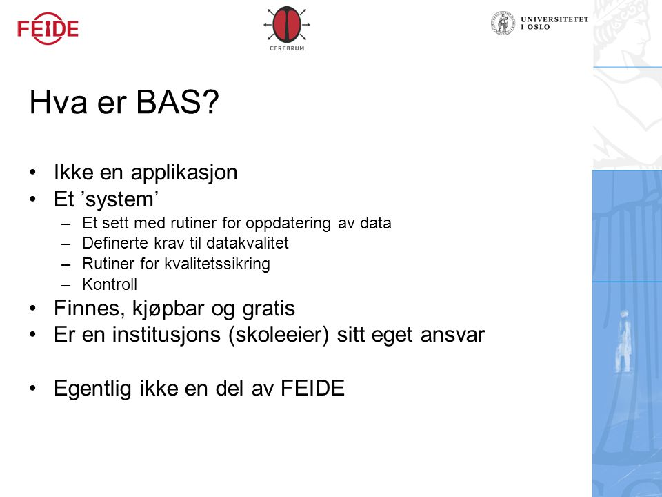 Hva er BAS Ikke en applikasjon Et 'system' Finnes, kjøpbar og gratis