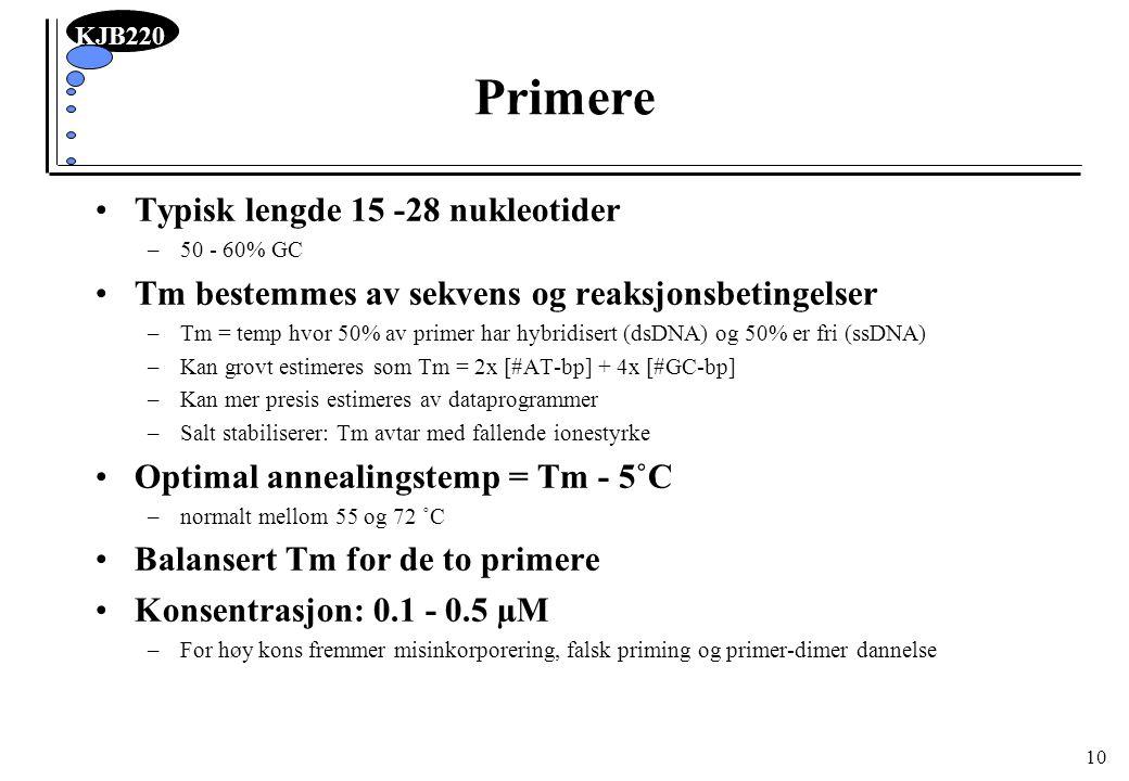 Primere Typisk lengde 15 -28 nukleotider