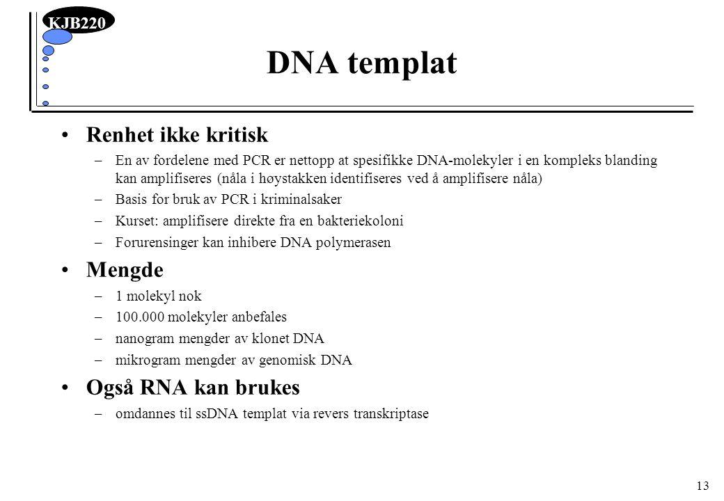 DNA templat Renhet ikke kritisk Mengde Også RNA kan brukes