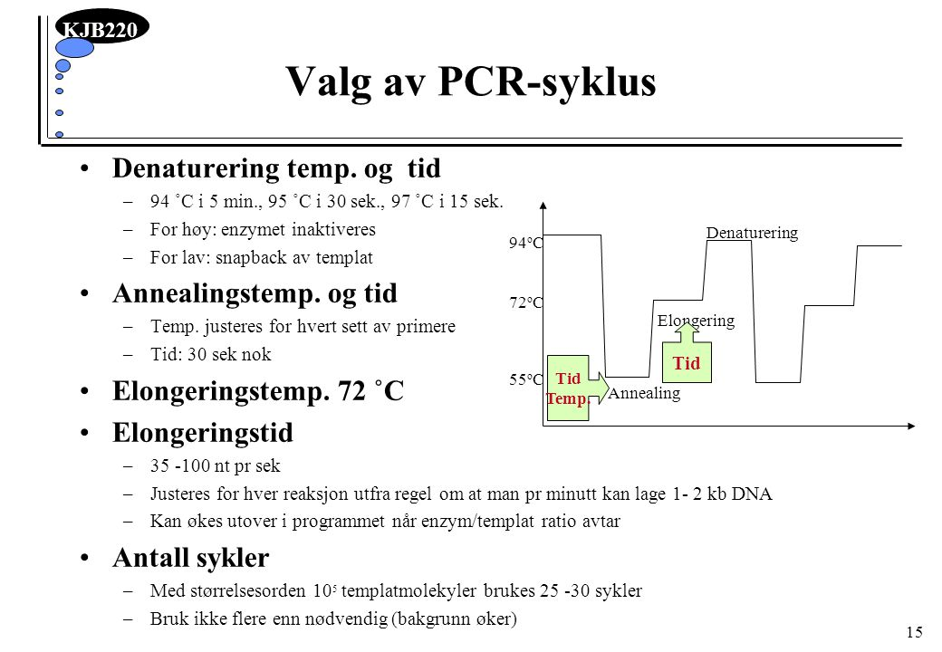 Valg av PCR-syklus Denaturering temp. og tid Annealingstemp. og tid
