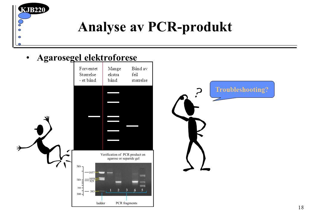 Analyse av PCR-produkt