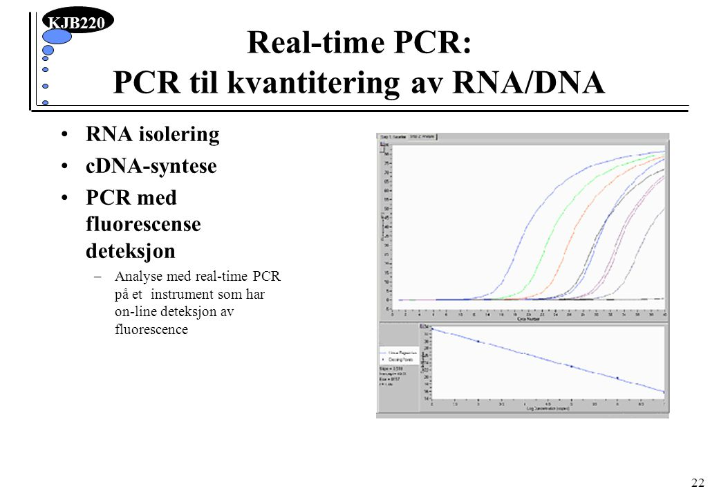 Real-time PCR: PCR til kvantitering av RNA/DNA
