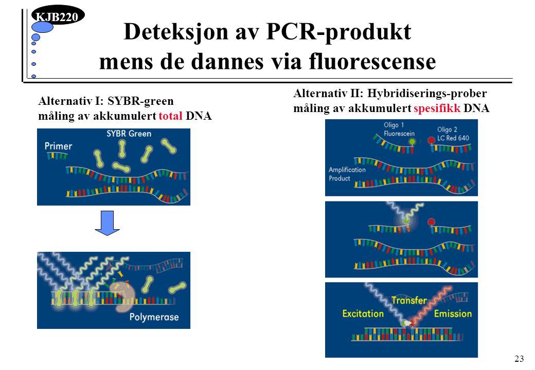 Deteksjon av PCR-produkt mens de dannes via fluorescense