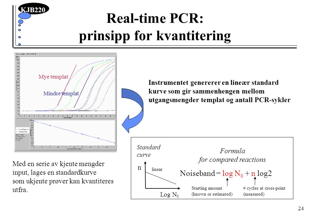 Real-time PCR: prinsipp for kvantitering