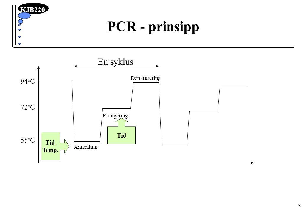 PCR - prinsipp En syklus 94oC 72oC 55oC Tid Tid Temp. Denaturering