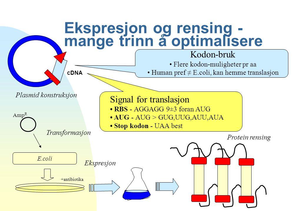 Ekspresjon og rensing - mange trinn å optimalisere