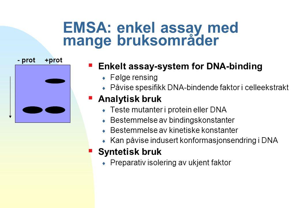 EMSA: enkel assay med mange bruksområder