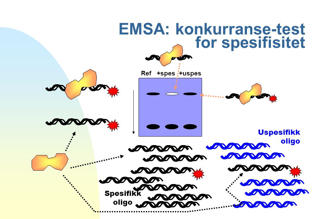 EMSA: konkurranse-test for spesifisitet