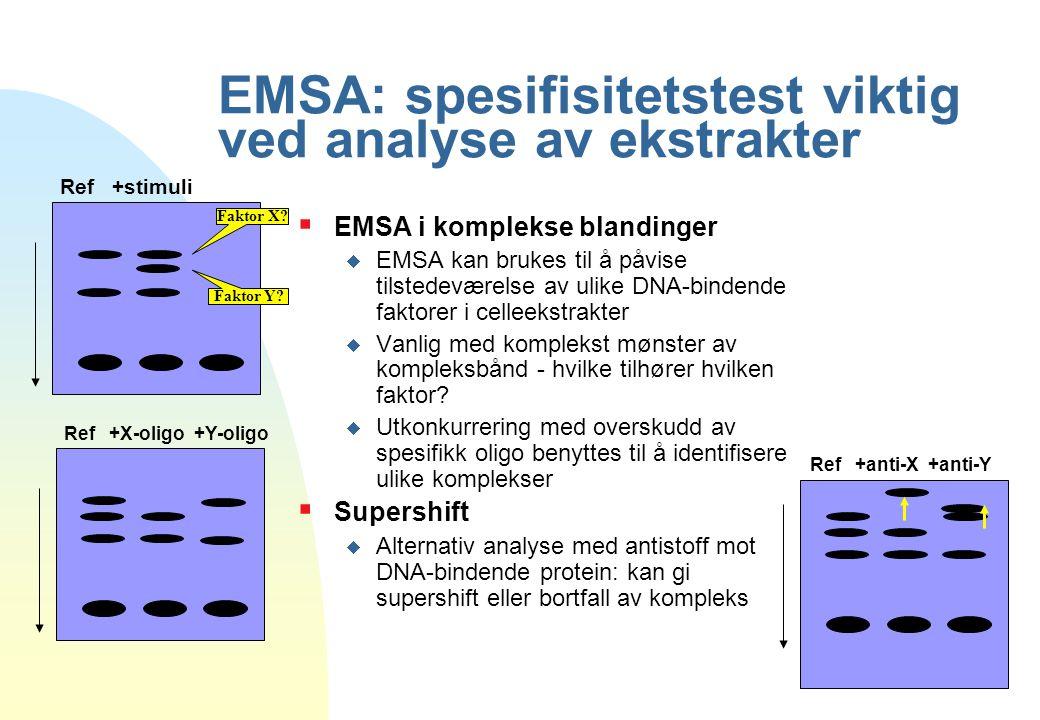 EMSA: spesifisitetstest viktig ved analyse av ekstrakter