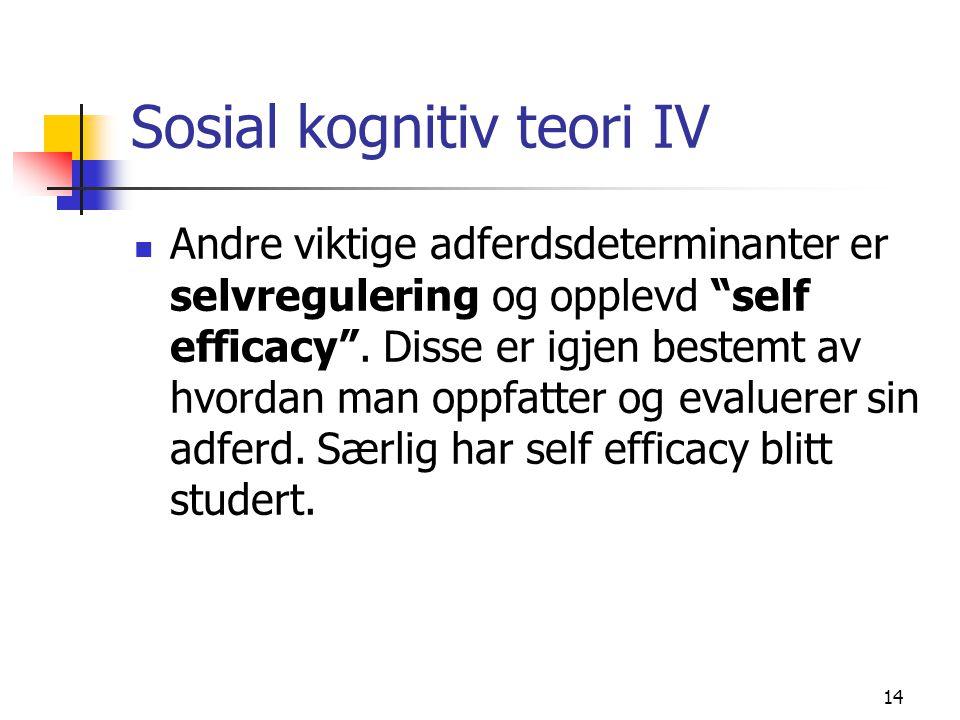 Sosial kognitiv teori IV