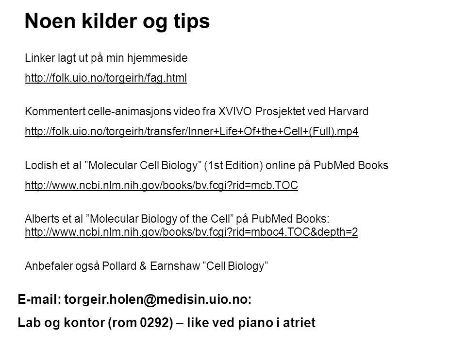 Noen kilder og tips E-mail: torgeir.holen@medisin.uio.no: