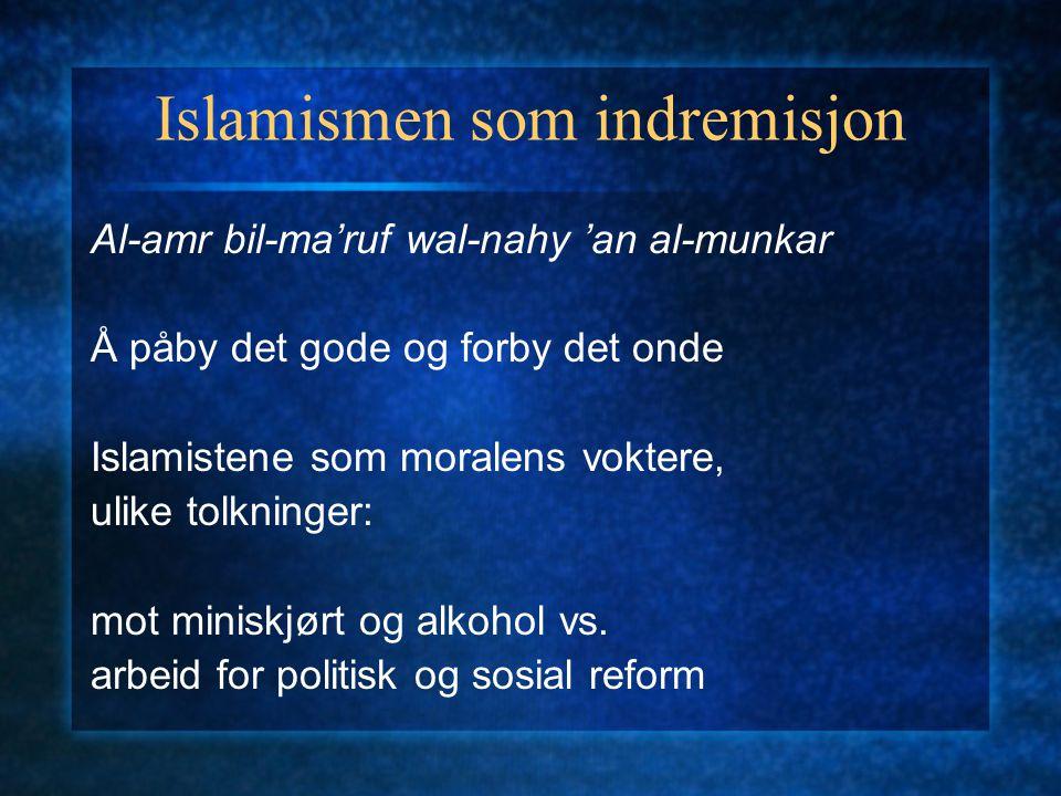 Islamismen som indremisjon