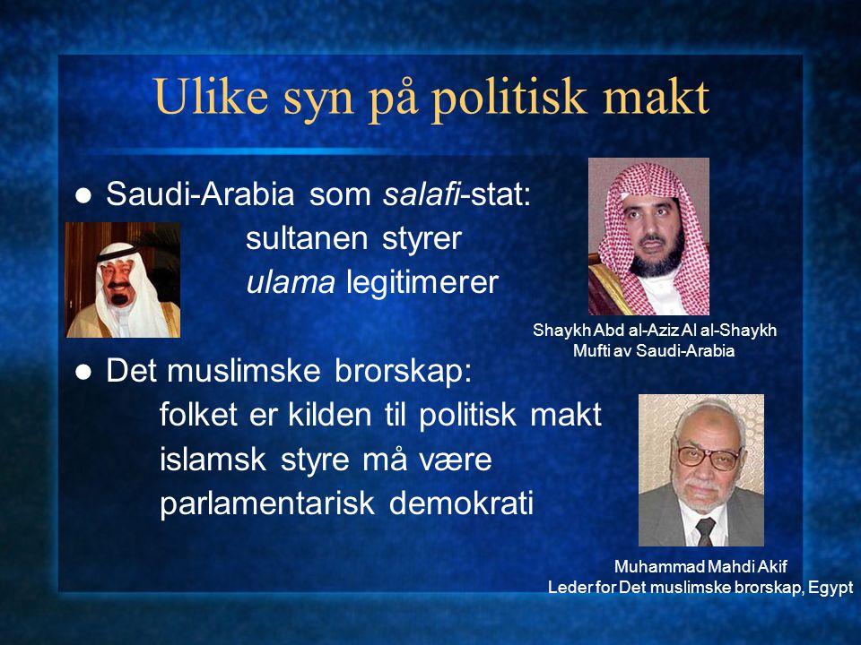 Ulike syn på politisk makt