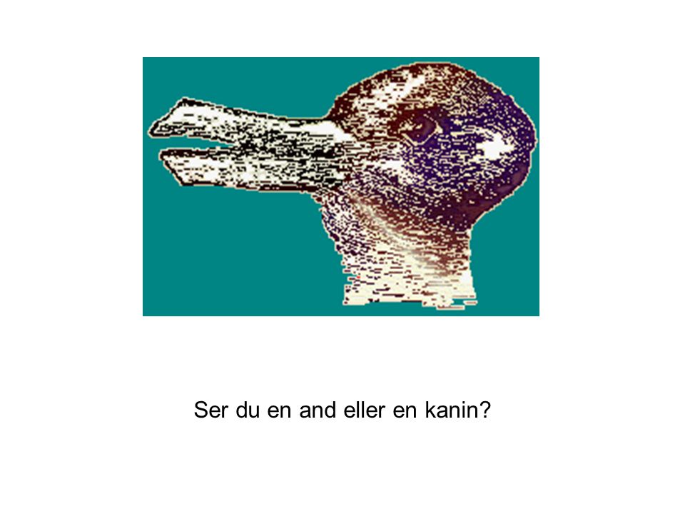 Ser du en and eller en kanin